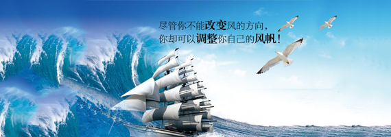安徽皖仪科技股份有限公司-图片